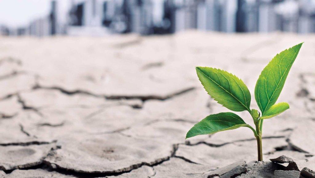 Klimat – czynnik dużego ryzyka