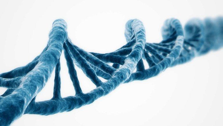 Społeczna odpowiedzialność wpisana wDNA firmy